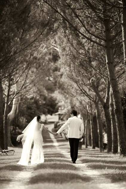 Pre Wedding Engagement Shoot Provence (45)